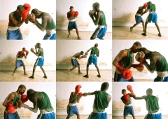 boxing boys